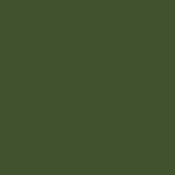 Buckramleinen - lizard