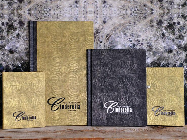 ClemmUp® - Kartenserie: Speisekarten, Rechnungskassette, Getränke- und Weinkarte, Leguanimitat mit Prägung